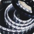 Светодиодная лента SMD 5050/60 Цена за 1 м.