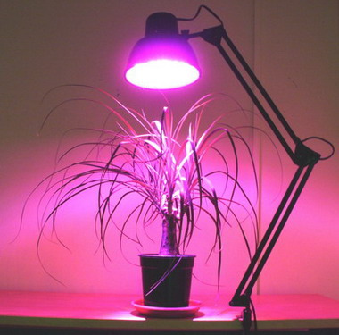 Освещение светодиодными лампами своими руками